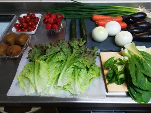 洗った野菜